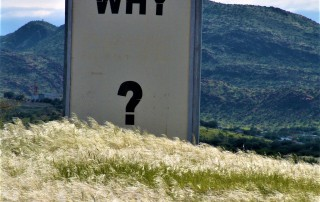 Why signage near grass during daytime